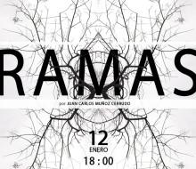 Exposición Ramas
